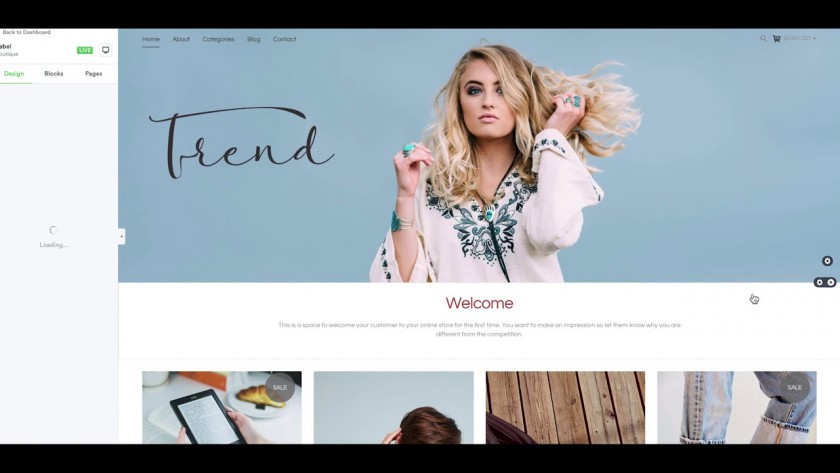 How to Create a Digital Web Store or Any Store Quickly!